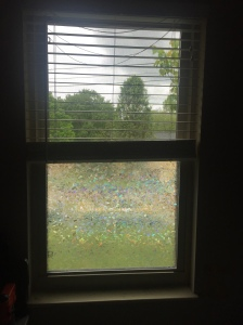 Rabbitgoo Window Cling/Film Application